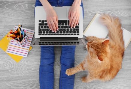 Woman typing on laptop and sitting on floor with fluffy cat