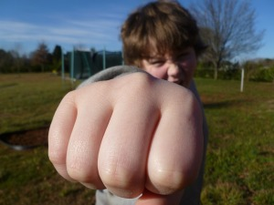 aggressive child punching