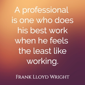 What Makes a Professional