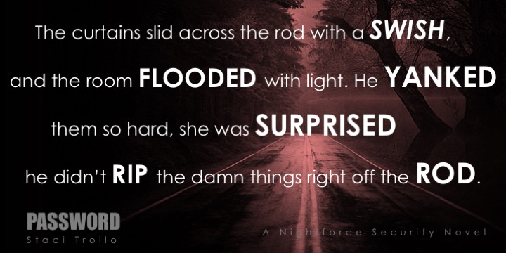 PASSWORD TEASER: The curtains slid across the rod with a swish, and the room flooded with light. He yanked them so hard, she was surprised he didn't rip the damn things right off the rod.