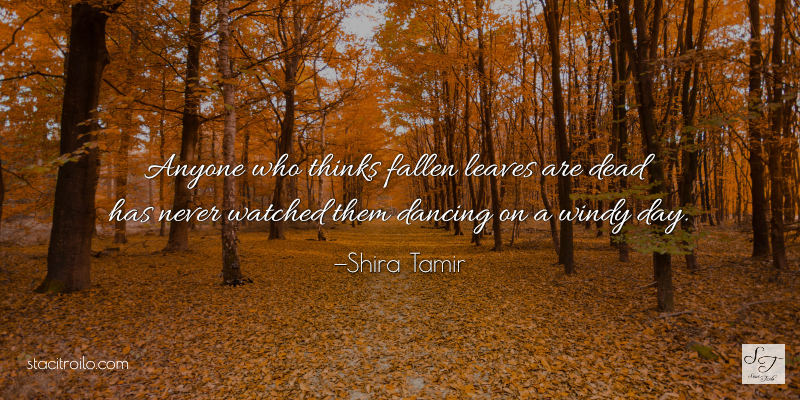 Fallen leaves aren't dead, they're dancing.